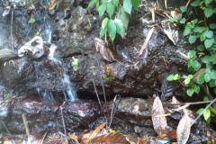 waterfall_five