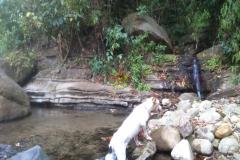waterfall_three