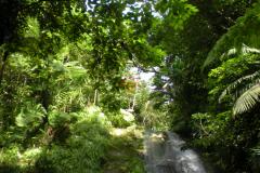stmarks_waterfall_fifteen
