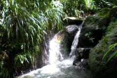 stmarks_waterfall_ninteen