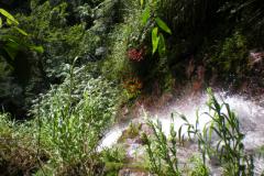 stmarks_waterfall_twelve