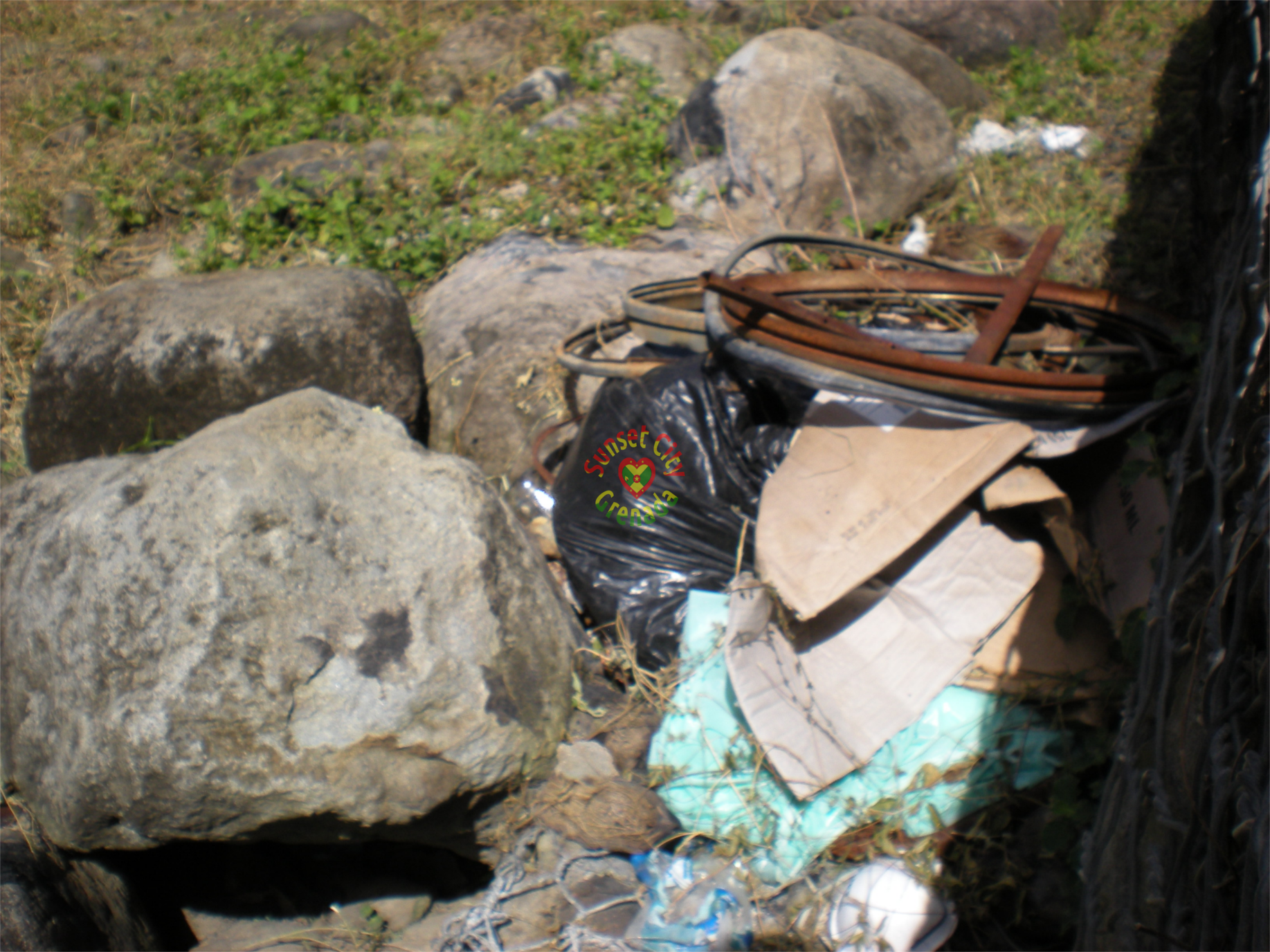 Garbage dumped on banks of river