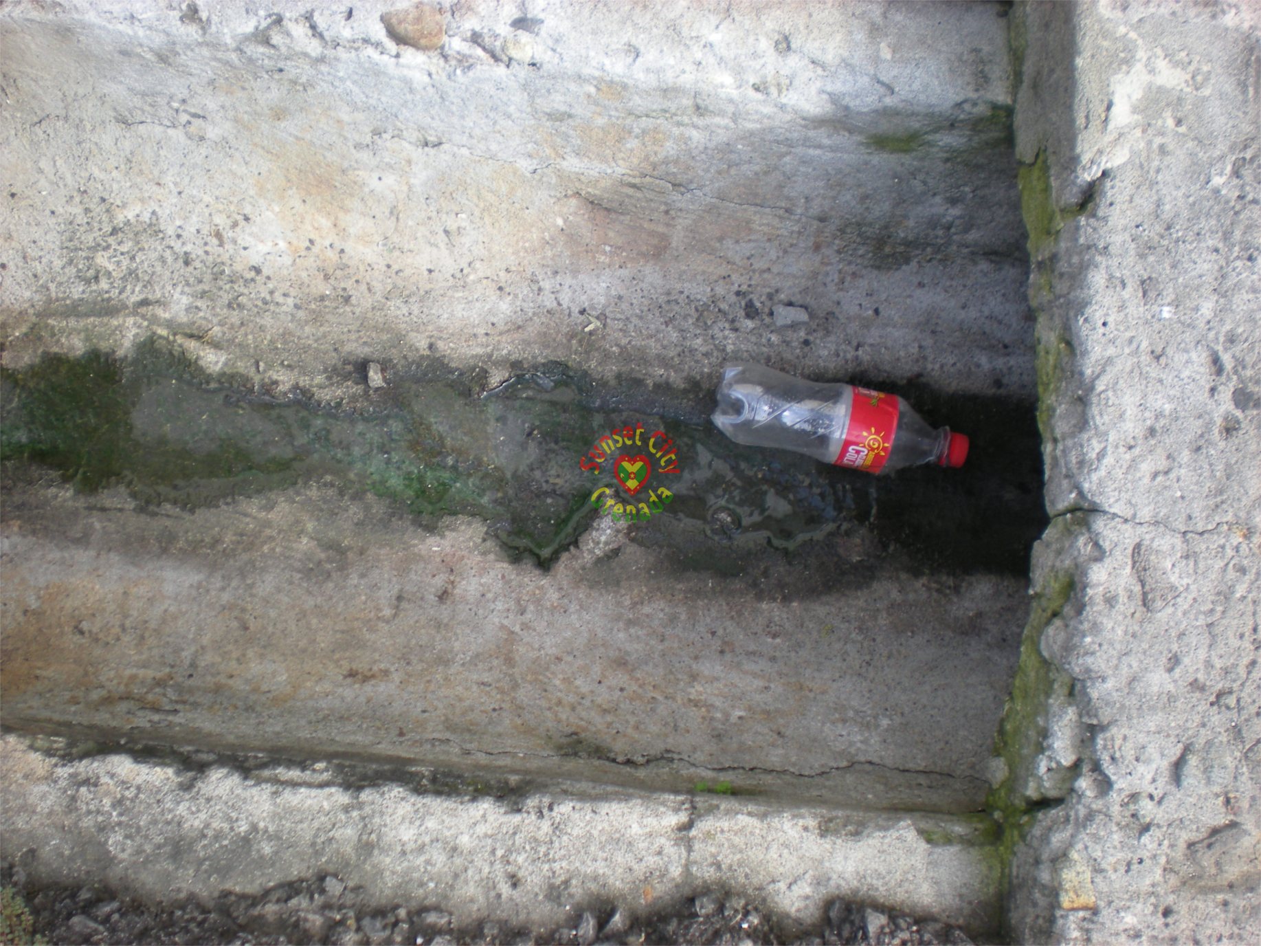 Empty coke bottle dumped in the drain on a backstreet